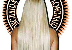 A Fun Pic  our Longhairs hair is muuuch shinier than thissss. Click me
